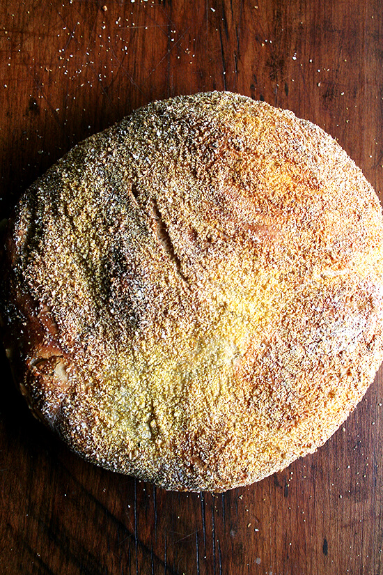 Mark Bittman-Jim Lahey No-Knead Bread, just baked