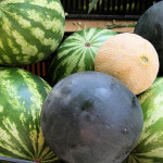 Watermelon Gazpacho & Watermelon Salad