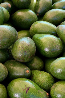 In The Land Of Avocados and Lemons