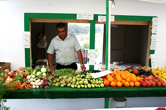 Valdivia Farmstand