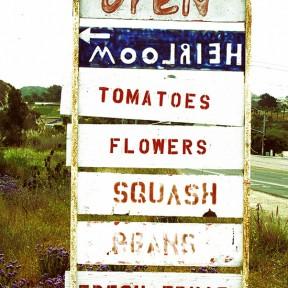 Bubalus Bubalis Mozzarella & Heirloom Tomatoes
