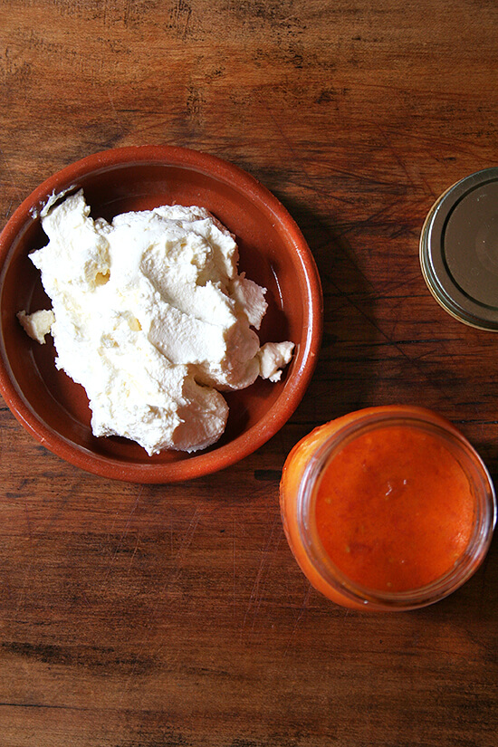 homemade ricotta and tomato sauce