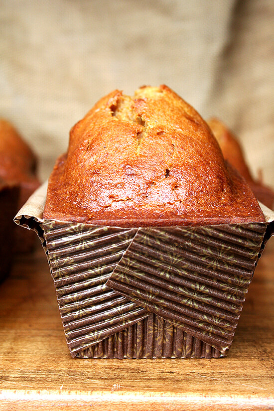 pumpkin bread as gift