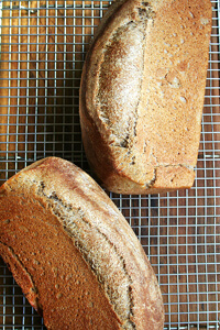 Bakery Lane's honey whole wheat bread