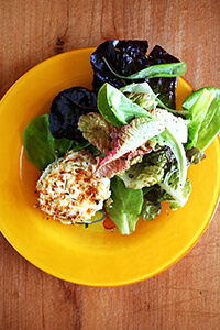 Baked, panko-crusted goat cheese round with Morning Song Farm greens