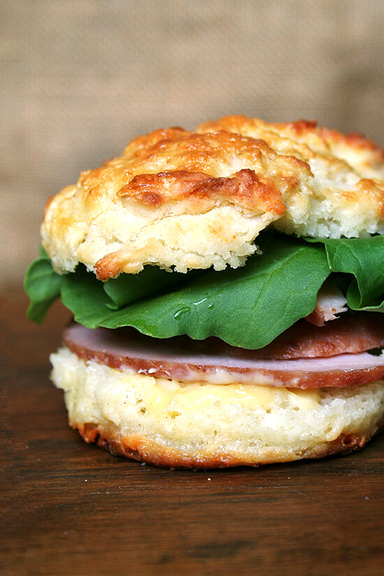 leftover ham and arugula sandwich on cheddar biscuit with mustard sauce