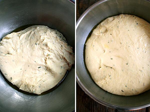 dough, just mixed (left) and risen (right)