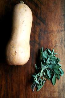Super Fast Pasta Dish: Rotini with Butternut-Sage Sauce