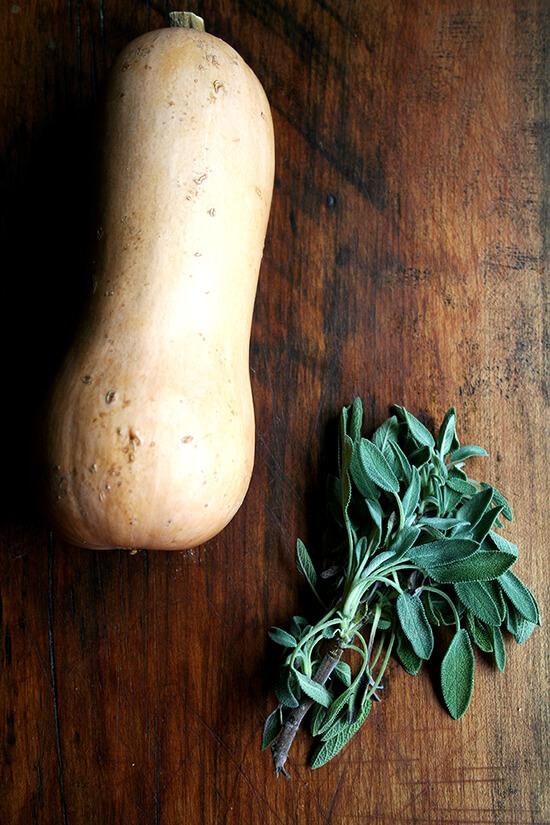 butternut squash & sage