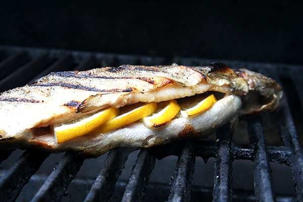 trout, grilling