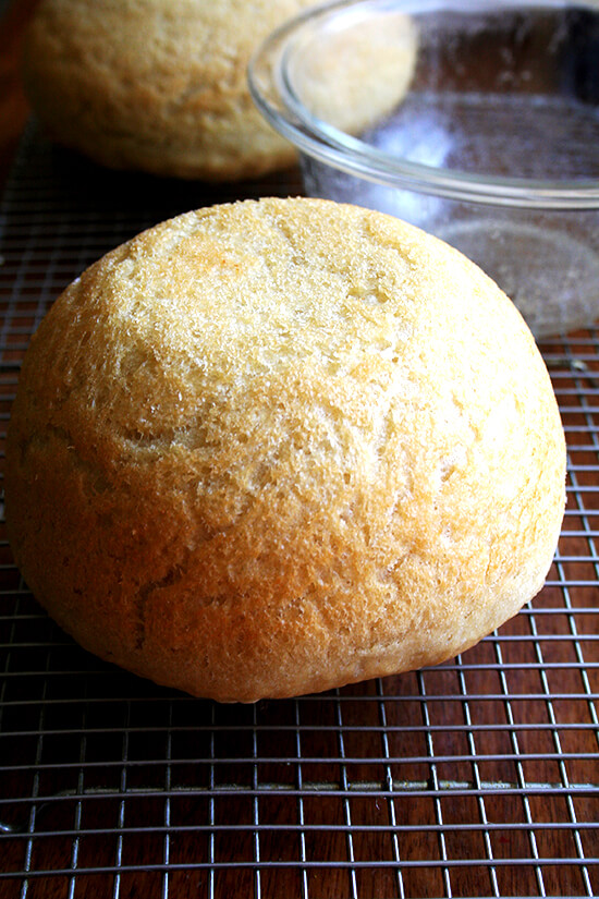 My Mother's Peasant Bread: The Easiest No-Knead Bread You Will Ever Make | alexandra's kitchen