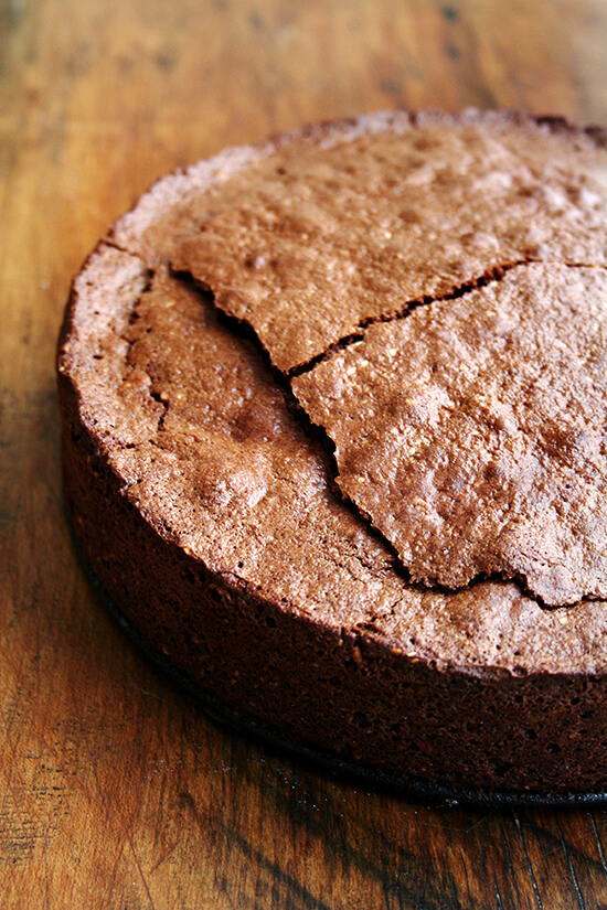 just-baked torte