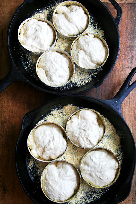 dough in rings