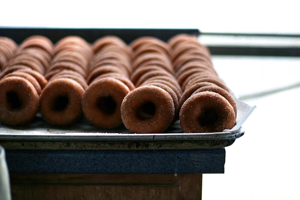 apple-cider donuts