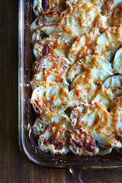 just baked gratin