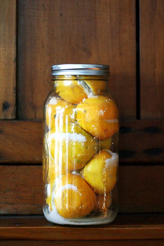 preserved lemons, day 1
