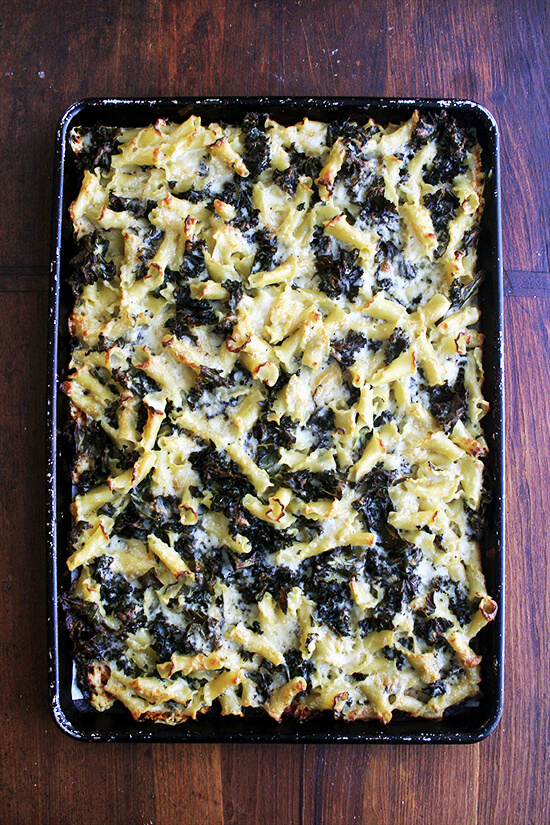 Baked pasta gratin on a sheet pan maximizes the crispness effect. The ratio of crunchy topping to creamy center increases, making sure there's plenty of the best part of the gratin for every one. // alexandracooks.com
