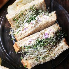 Walter Sands' Soft Sandwich Bread