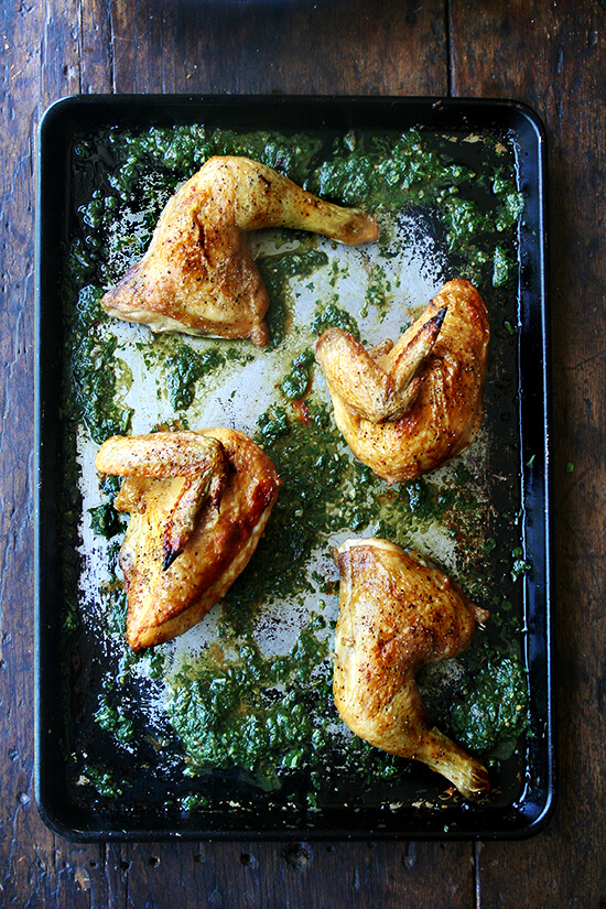roasted chicken & herb sauce