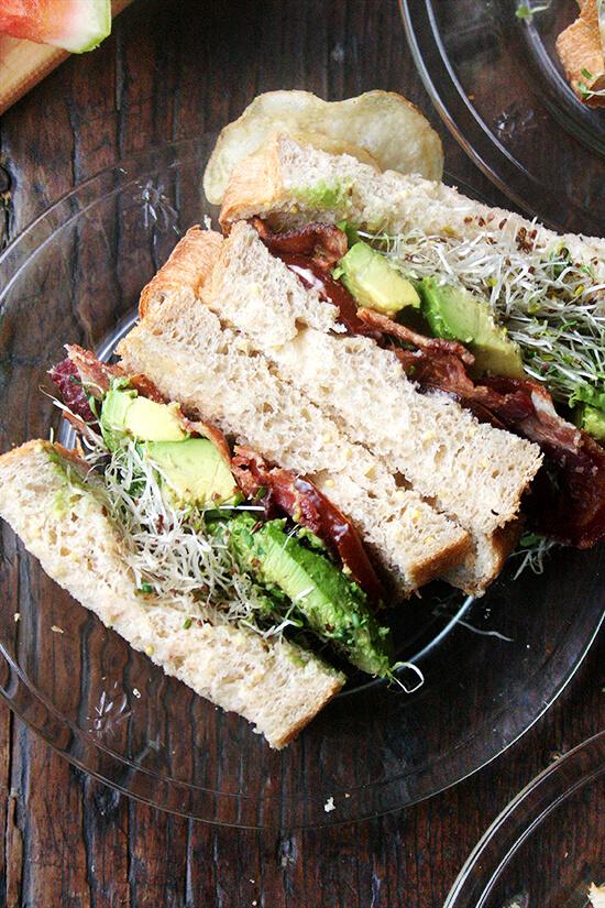 bacon avo sandwich