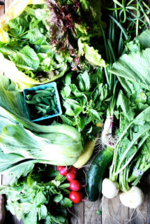 CSA Week 2: Simple Creme Fraiche Dressing, Turnip Burgers,and Bok Choy — Help?