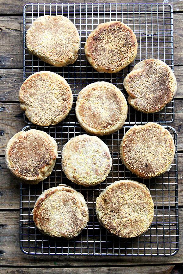 100 Whole Wheat English Muffins