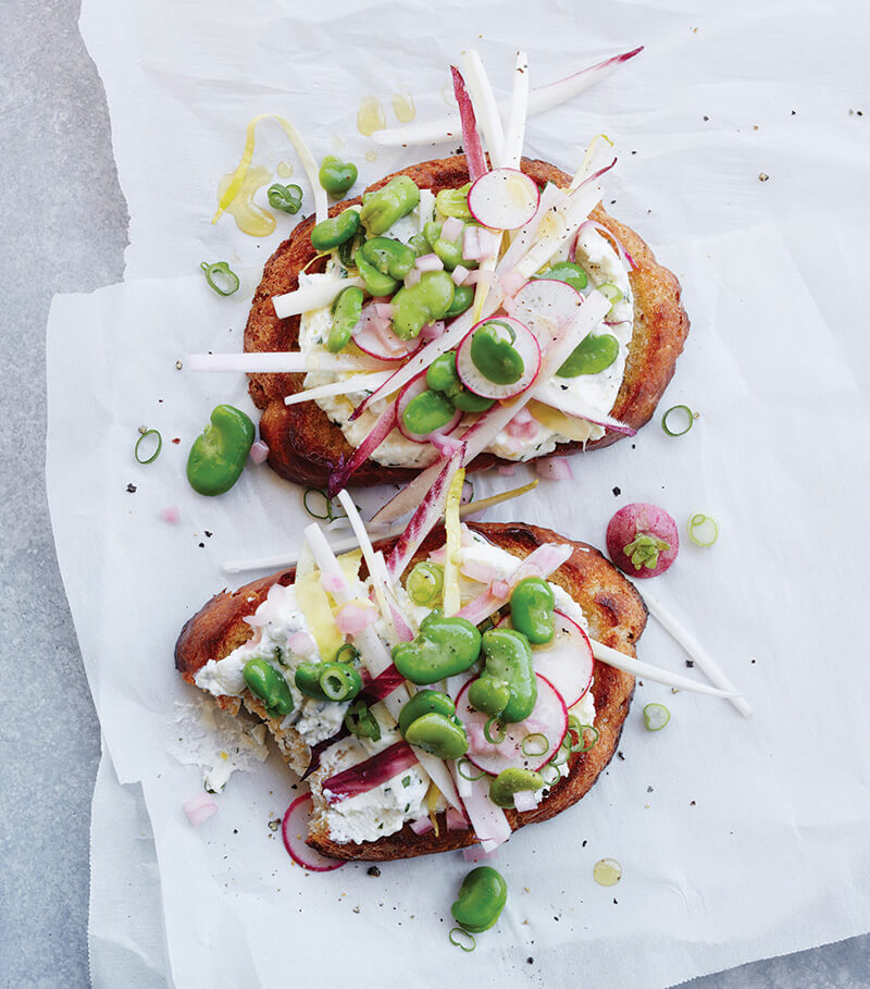 endive-and-fava-tartines