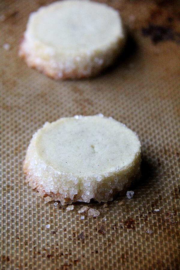 baked vanilla bean sable
