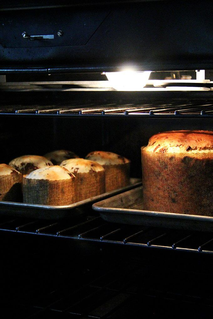bakingpanettones